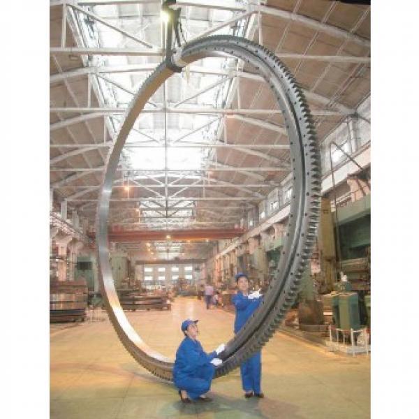 300DBS202y slewing bearing #1 image