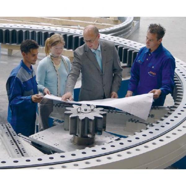 VLI200544-N Four point contact bearing (Internal gear teeth) #1 image